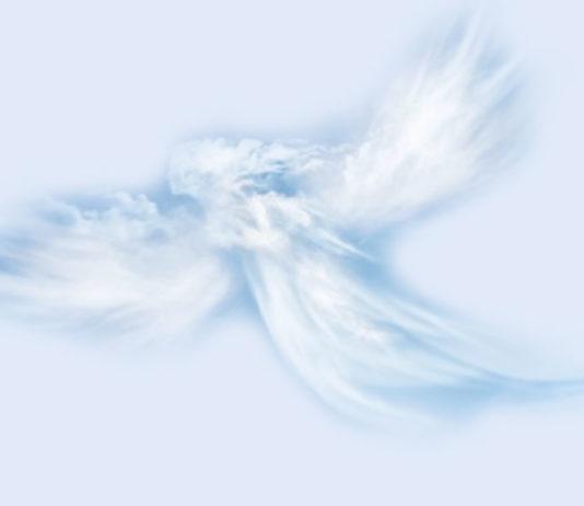 Gli Angeli del Santa Maria Terni